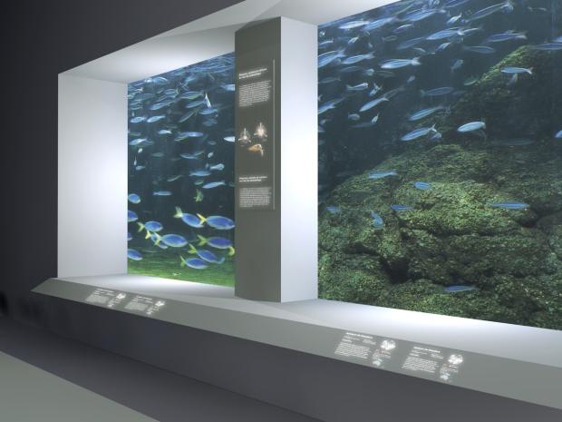 aq detail bassins